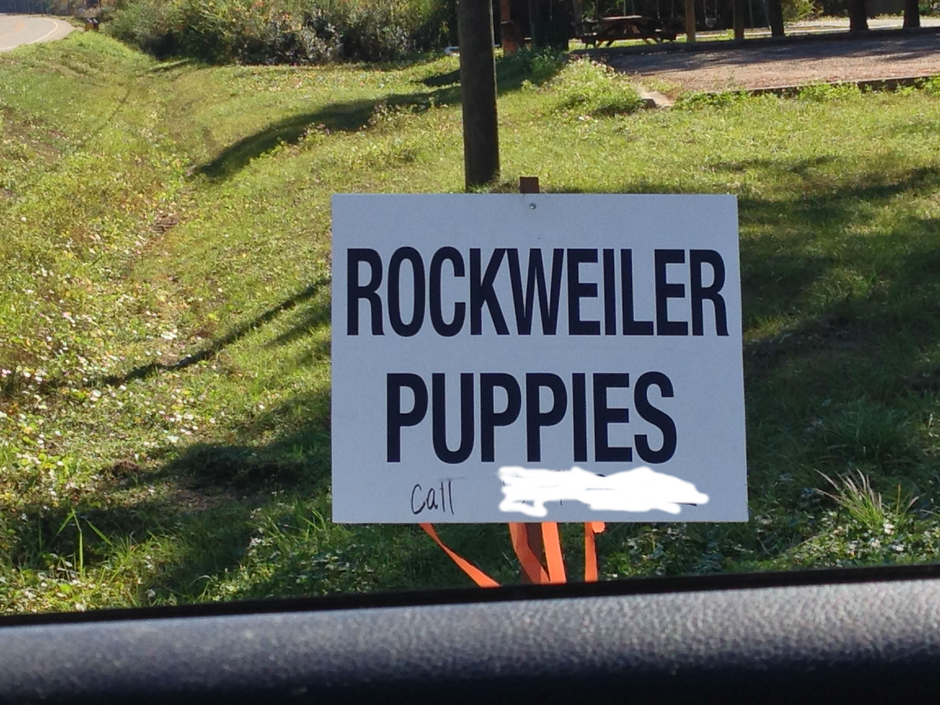 what is a puppy mill